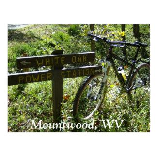 Cartão Postal Parque de Mountwood