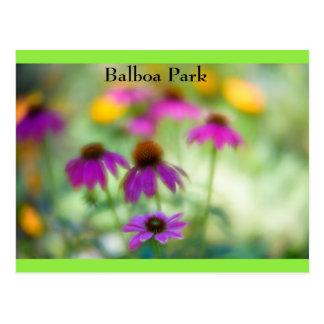 Cartão Postal Parque do balboa