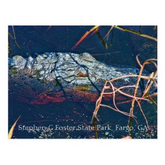 Cartão Postal Parque estadual adoptivo de Stephen C, jacaré