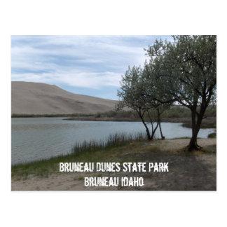 Cartão Postal Parque estadual das dunas de Bruneau