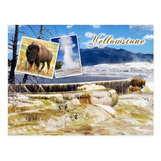 Cartão Postal Parque nacional de Mammoth Hot Springs,