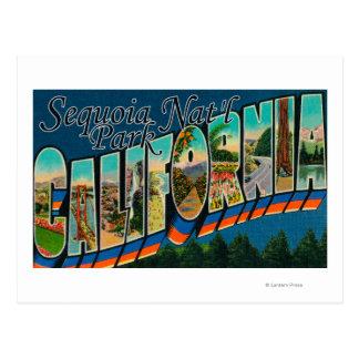 Cartão Postal Parque nacional de sequóia, Califórnia