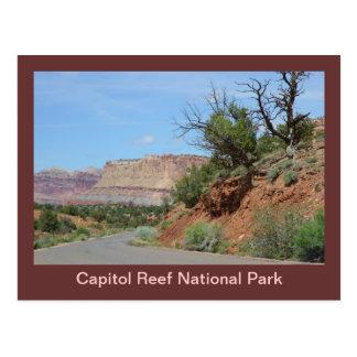 Cartão Postal Parque nacional do recife do Capitólio