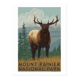 Cartão Postal Parque nacional mais chuvoso, cena de