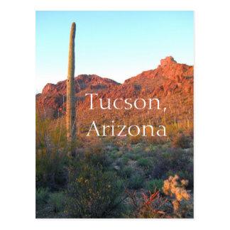 Cartão Postal Parque nacional Tucson de Saguaro, arizona