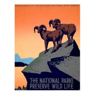 Cartão Postal Parques nacionais