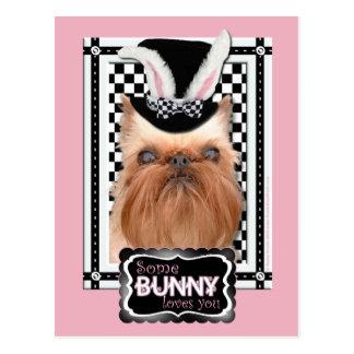 Cartão Postal Páscoa - algum coelho o ama - Bruxelas Griffon