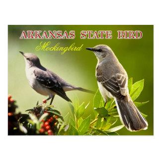 Cartão Postal Pássaro de estado de Arkansas - tordo dos remedos
