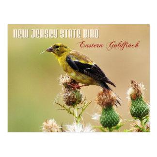 Cartão Postal Pássaro de estado de New-jersey - Goldfinch