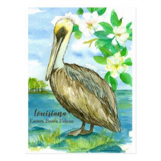 Cartão Postal Pássaro de estado oriental do pelicano de