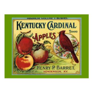 Cartão Postal Pássaro do cardeal de Kentucky