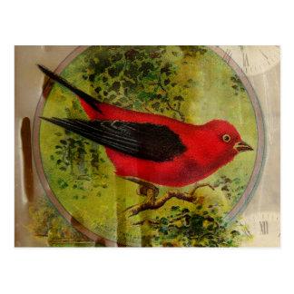 Cartão Postal Pássaro do vermelho do vintage