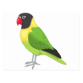 Cartão Postal Pássaro exótico