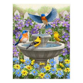 Cartão Postal Pássaros e jardim coloridos do banho do pássaro