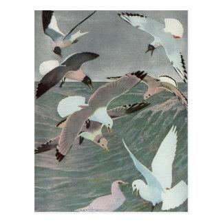 Cartão Postal Pássaros marinhos do vintage, gaivotas que voam