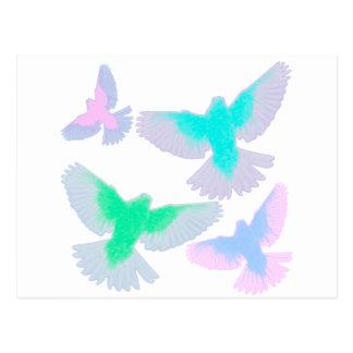 Cartão Postal Pássaros Pastel