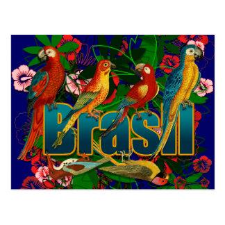 Cartão Postal Pássaros tropicais florais de Brasil