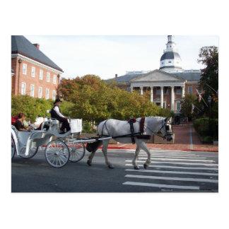 Cartão Postal Passeio do cavalo e da carruagem de Annapolis