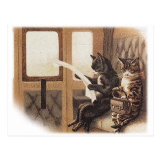 Cartão Postal Passeio do trem do gatinho