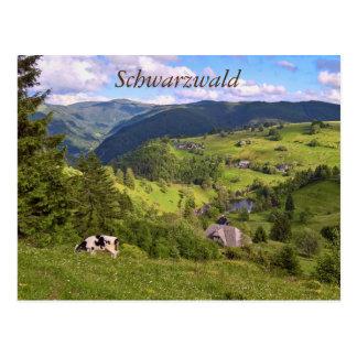 Cartão postal: Pastos e uma vaca com opinião de