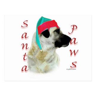 Cartão Postal Patas anatólias do papai noel do cão de pastor