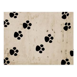 Cartão Postal Patas do cão