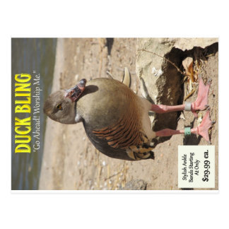 Cartão Postal Pato Bling
