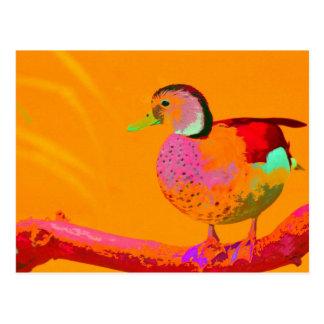 Cartão Postal Pato do disco
