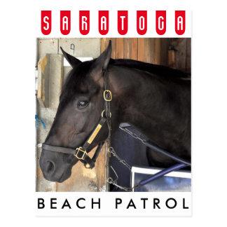 Cartão Postal Patrulha da praia
