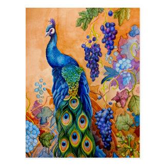 Cartão Postal Pavão e uvas