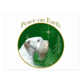 Cartão Postal Paz de Sealyham Terrier na terra