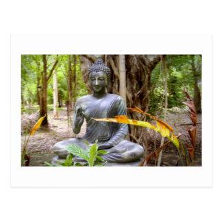 Cartão Postal Paz   do budismo de BUDDHA
