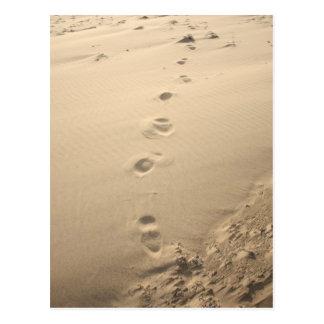 Cartão Postal Pegadas de Sandy