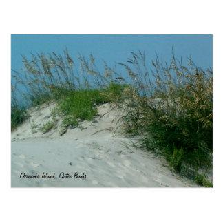 Cartão Postal Pegadas e dunas de areia, ilha de Okracoke, NC