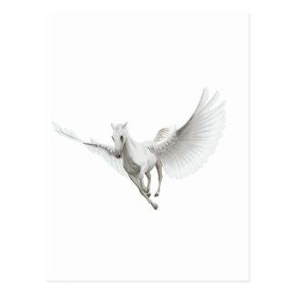 Cartão Postal Pegasus branco