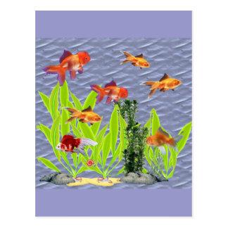 Cartão Postal Peixe dourado
