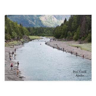 Cartão Postal Peixes Alaska!