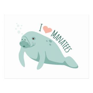 Cartão Postal Peixes-boi do amor