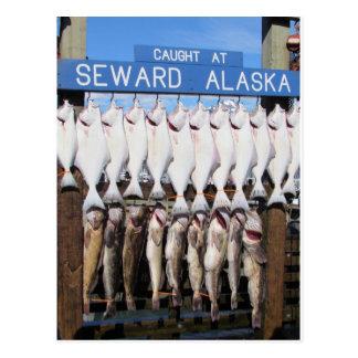 Cartão Postal Peixes em Seward, Alaska