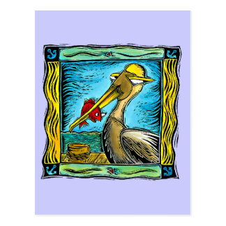 Cartão Postal Pelicano das caraíbas