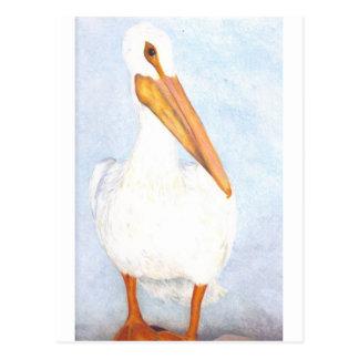 Cartão Postal Pelicano solitário trabalhos artísticos originais