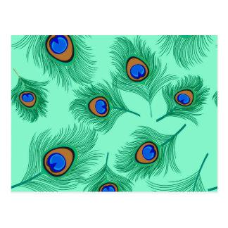 Cartão Postal Penas do pavão de turquesa no Aqua claro