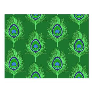 Cartão Postal Penas do pavão, verde limão no verde esmeralda