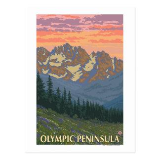 Cartão Postal Península olímpica, flores de WashingtonSpring