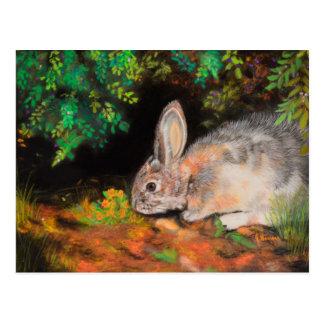 Cartão Postal Pensar sobre você carda com coelho/coelho