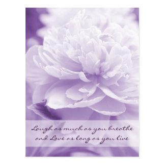 Cartão Postal Peônia roxa bonito