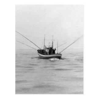 Cartão Postal Pesca à linha do barco de pesca