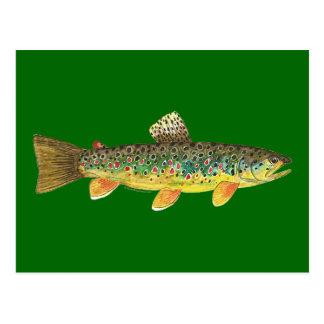 Cartão Postal Pesca da truta de Brown