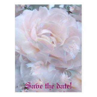 Cartão Postal Pétalas cor-de-rosa
