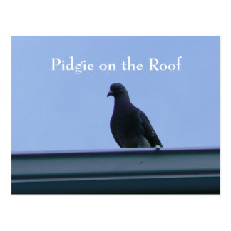 Cartão Postal Pidgie no telhado